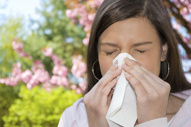 alergije-lekarna