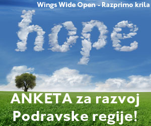 wingswideopen300x250