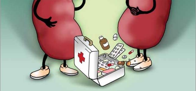 ledvice-lekarna