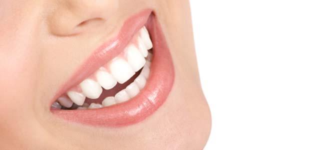 zobna-miska