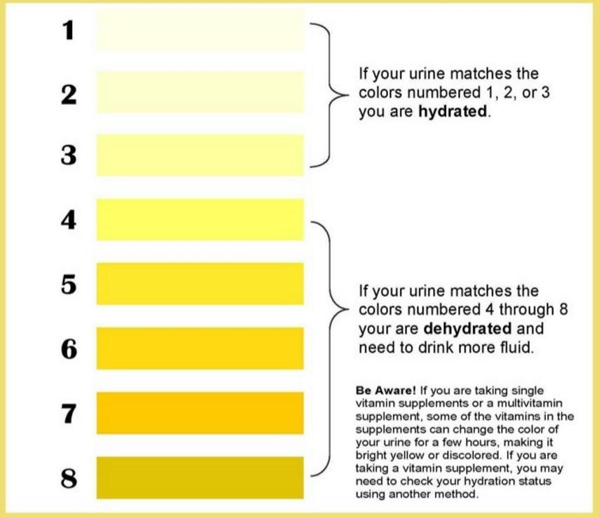 barve urina