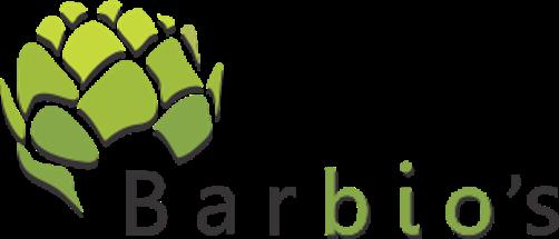 samo logo z senco 2