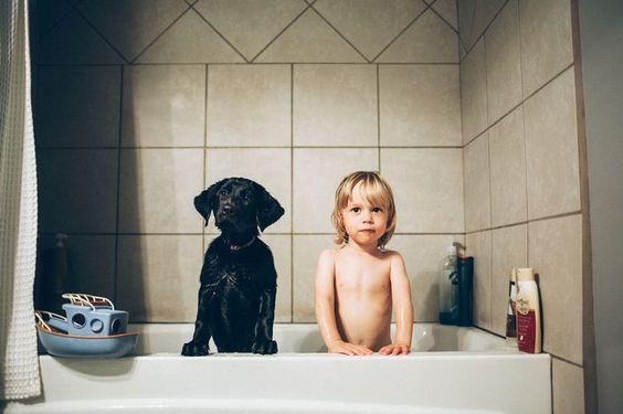 fantek in pes