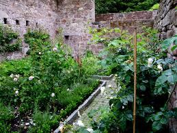zeliščni vrt