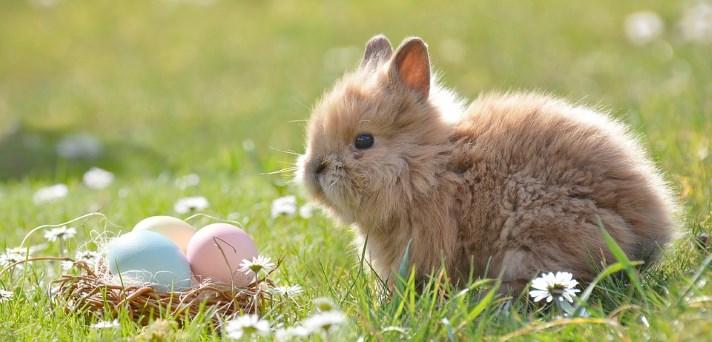 Velikonočna jajčka