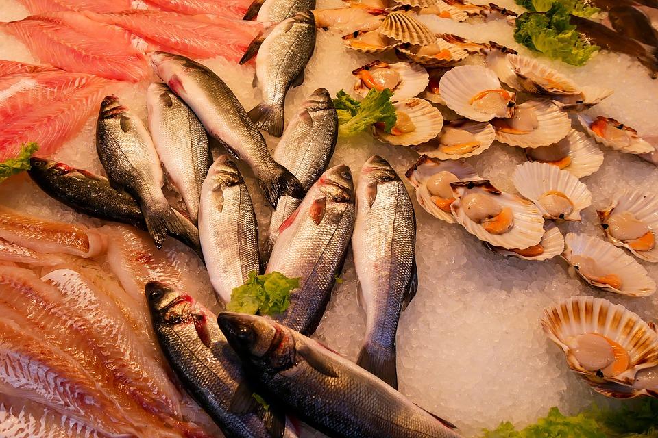 riba skoljka hrana omega 3 masna kiselina