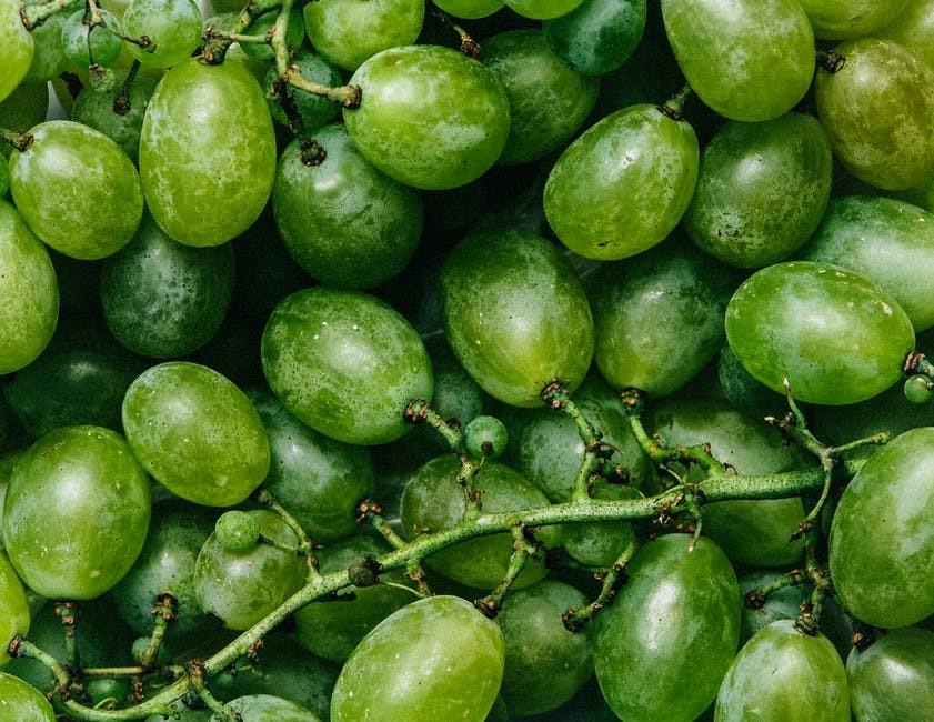 bijelo grozđe
