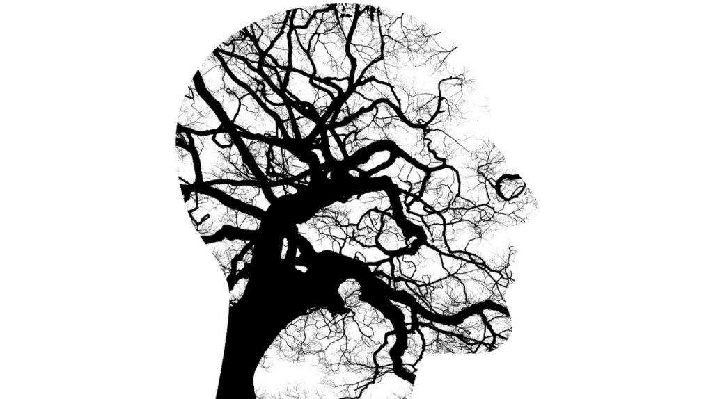 novrologija cujecnost mozgani