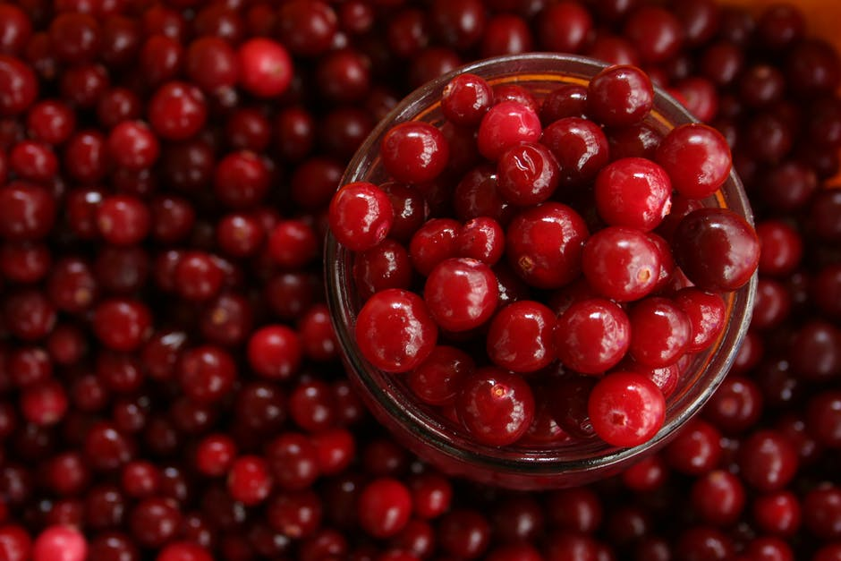 brusnica plod zdjela vitamin