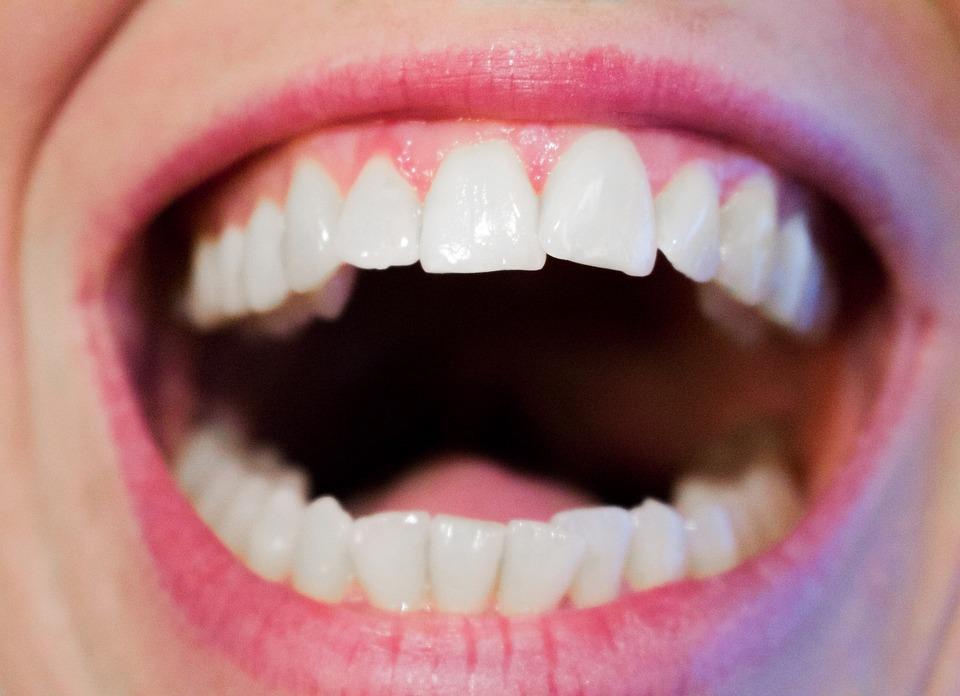 usna supljina zubi usna jezik