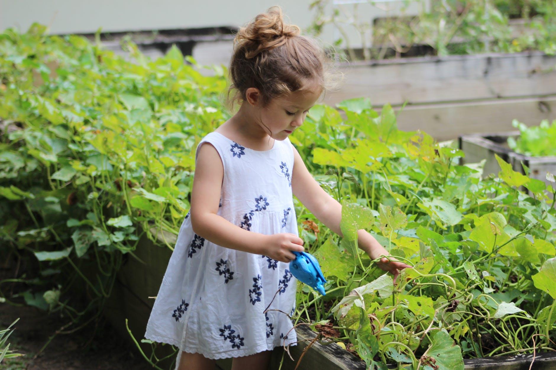 dijete posao cvijece odgovornost rad