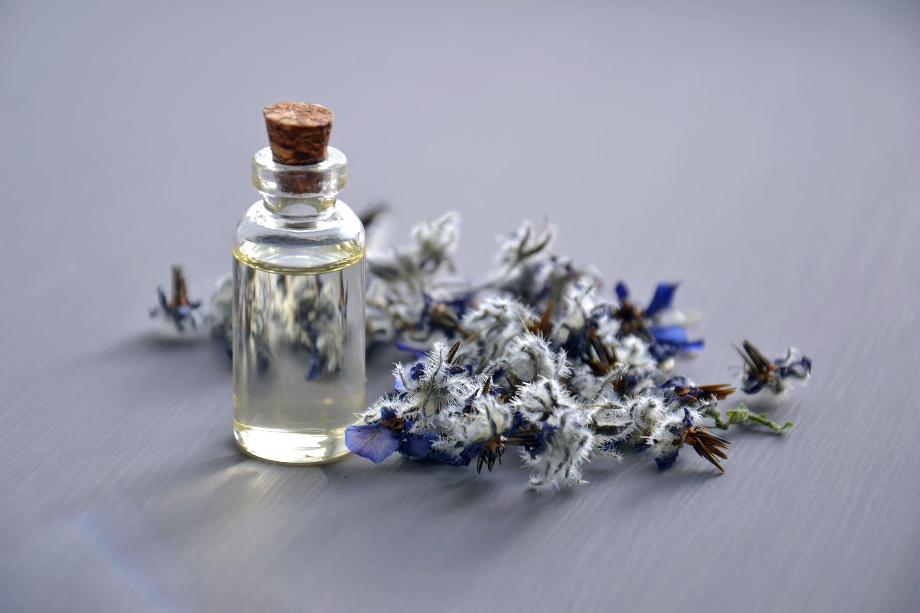 lavanda ulje cvijet