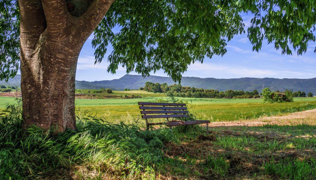 narava pokrajina pomlad iskanje poti
