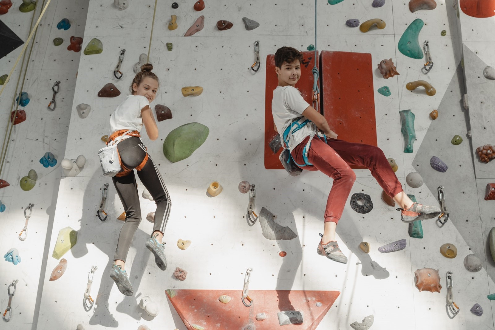 A group of people climbing a rock wall  Description automatically generated